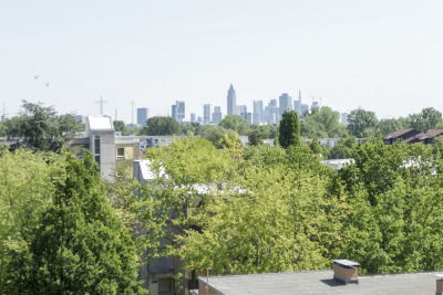 Views of the greenery around and the skyline
